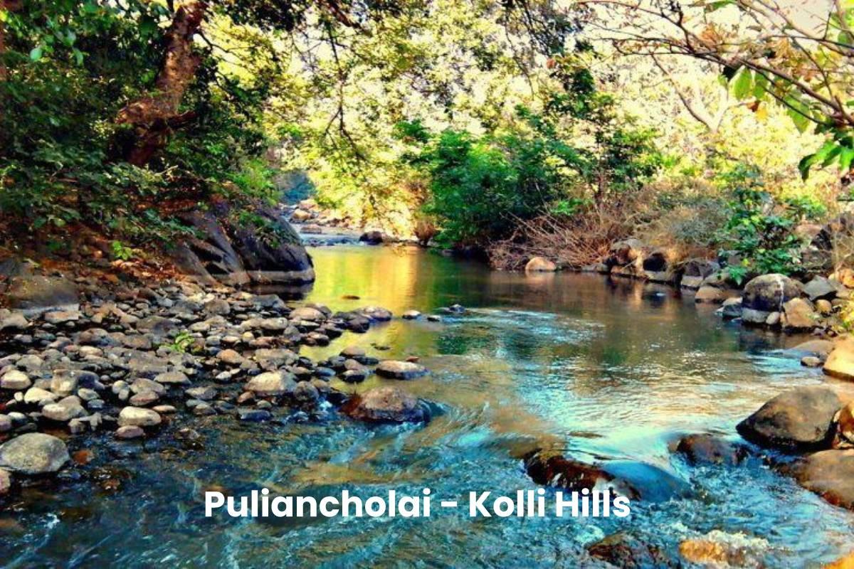 Puliancholai - Kolli Hills