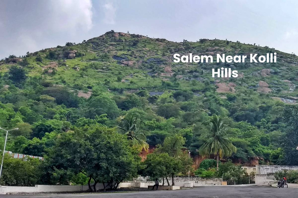 Salem Near Kolli Hills