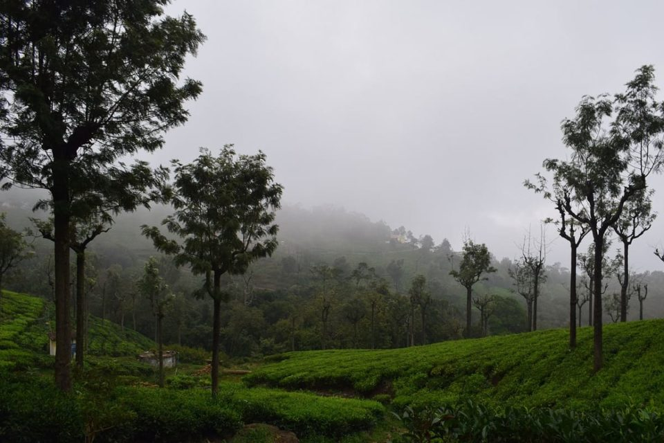 Coonoor - Places to Visit, Weather, Hotels - Complete Guide 2020
