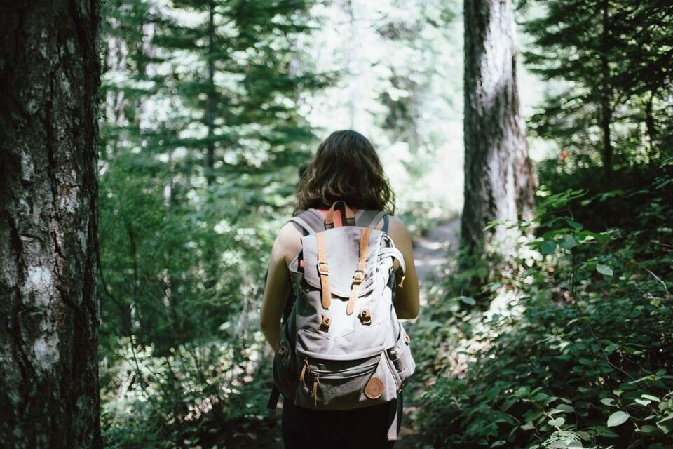 A Guide For Backpacking In The Wild